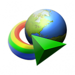 Internet Download Manager 6.38.1